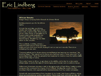 Eric Lindberg - sample article